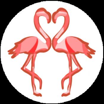 Pair of flamingos illustration - Karen Doherty Couples Coaching Brighton & Hove
